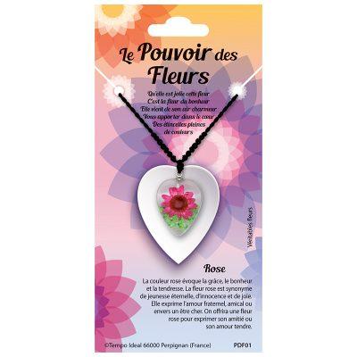 PDF - Pouvoir des Fleurs