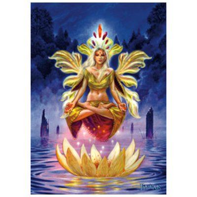 BM - Dharma cards Briar
